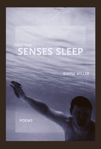 only-the-senses-sleep